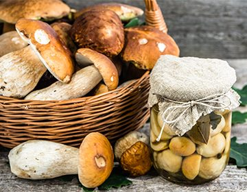 Рецепт маринования белых грибов на зиму