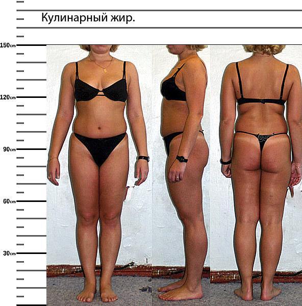 почему накапливается жир на животе