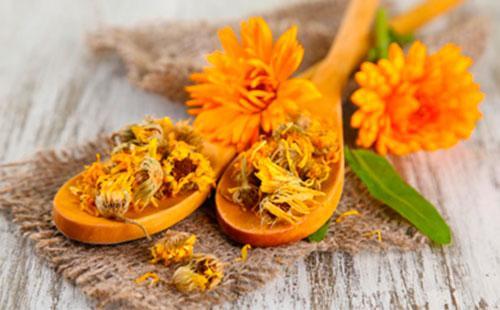 Сушенные цветы календулы