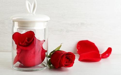 Роза в банке