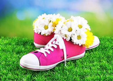 Цветы в кедах