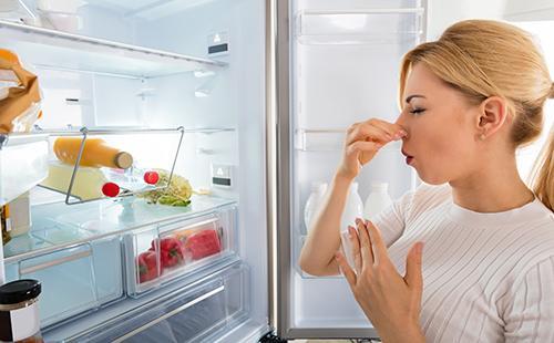 Entfernen Sie den Geruch aus dem Kühlschrank