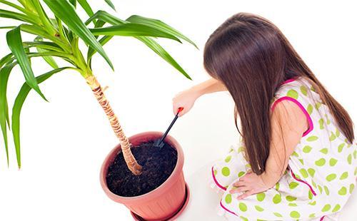 Девочка рыхлит землю в вазоне