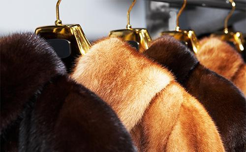 Как хранить норковую шубу в домашних условиях, профилактика моли и выбор чехла