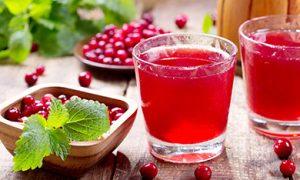 Как состряпать клюковный морс: жаропонижающий да противоотечный напиток