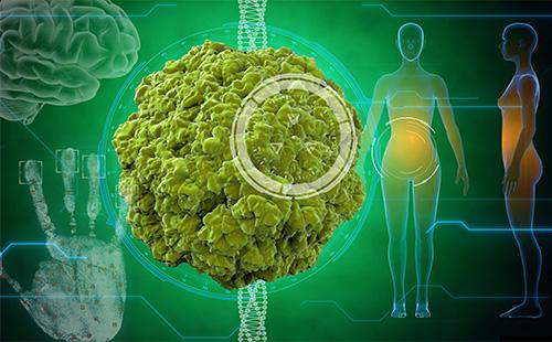 Изображение вируса