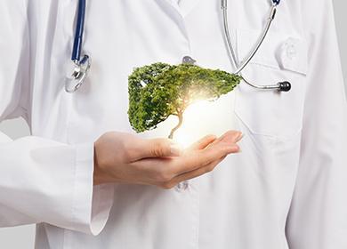 Зелёное дерево в руках врача символизирует здоровую печень