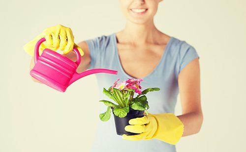 Женщина поливает цветок из розовой лейки