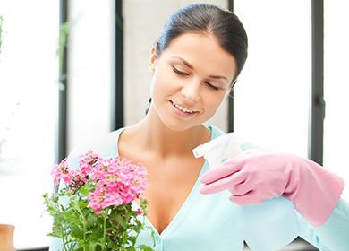 Женщина опрыскивает цветок в горшке