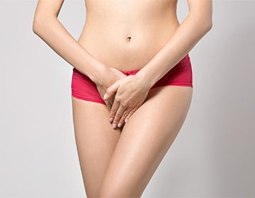 Складка кожи между влагалищем и анальным отверстием