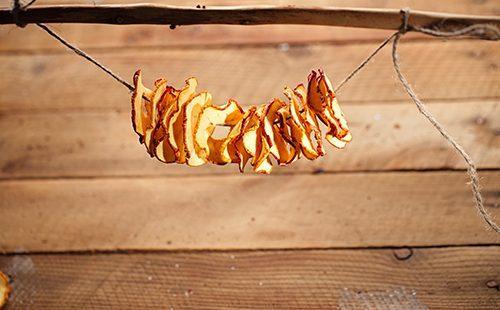 Яблочные ломтики на верёвочке