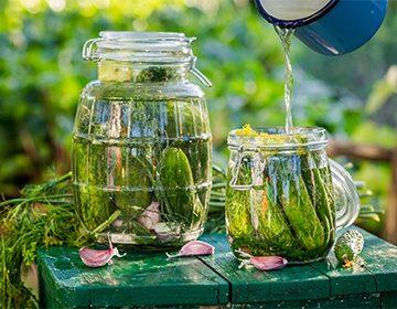 Как сделать маринад для засолки огурцов