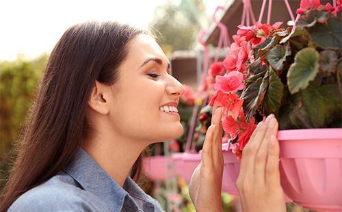 Женщина нюхает цветы бегонии