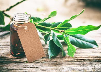Масло из листьев лавра