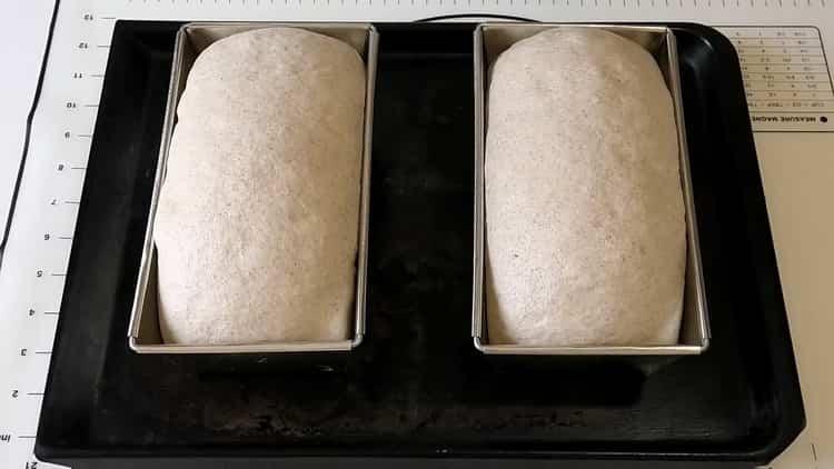Для приготовления пшенично -ржаного хлеба разделите тесто на буханки