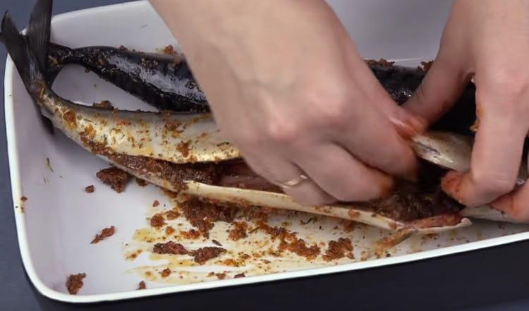 Выложив скумбрию в емкость с бортиками, натираем ее смесью специй.