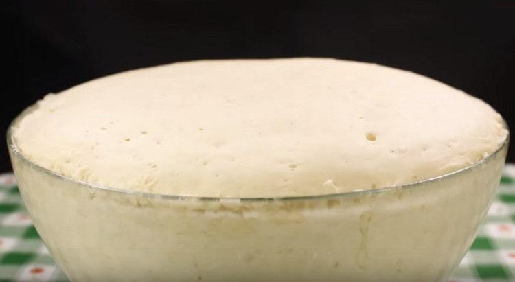 Теперь тесто для беляшей с мясом готово.