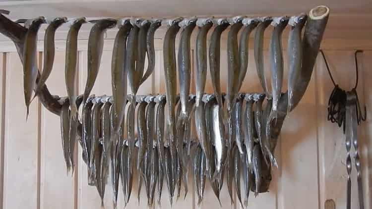 Для приготовления вяленой корюшки просушите рыбу
