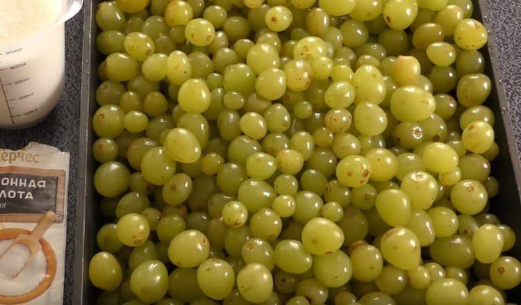 Ягоды винограда обрываем с гроздьев.